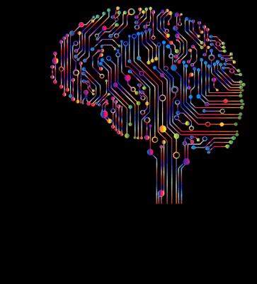 La Programmation Neuro Linguistique